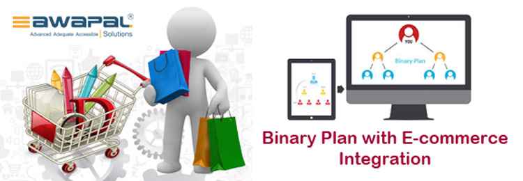 Binary-Plan-with-Ecommerce-integration