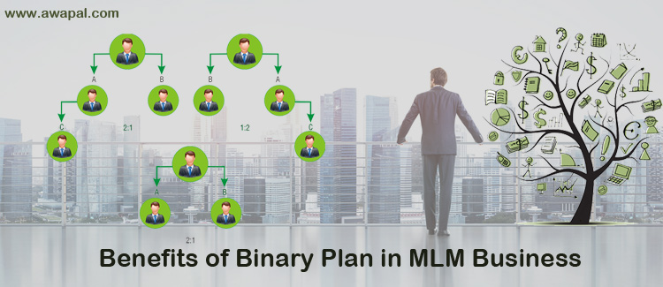 benefits-of-Binary-Plan-in-MLM-business